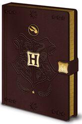 Quidditch - Cahier Premium