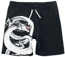 Dragon Ball Z - Shenron