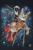 Superchaton Dans L'Espace