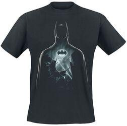 Vol Au Dessus De Gotham