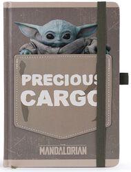 The Mandalorian - Precious Cargo