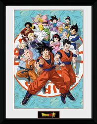 Dragon Ball Super - Groupe Universe