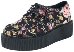 Creepers Flowers