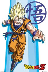Dragon Ball Z - SS Goku