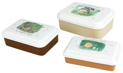 Lot de 3 Lunch-Box