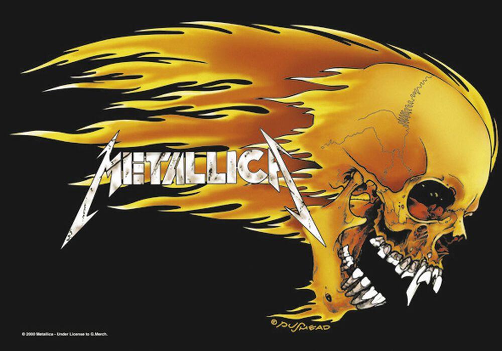 Skull & Flames