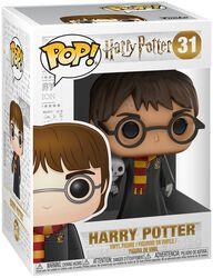 Figurine En Vinyle Harry Avec Hedwigee 31