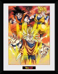 Dragon Ball Z - 3 Gokus