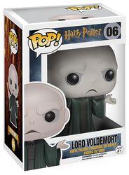 Figurine En Vinyle Lord Voldemort 06