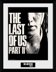 The Last Of Us 2 - Visage