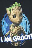Les Gardiens de la Galaxie 2 - I Am Groot