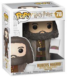 Figurine En Vinyle Rubeus Hagrid (Grande Taille) 78
